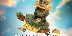 Pizzacat Wisdom