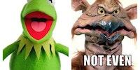 Kermit + meth =