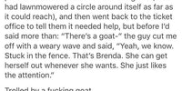 Goddammit Brenda.