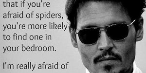 If you're afraid of spiders...