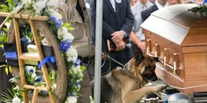 K9 officer saying goodbye to his partner.