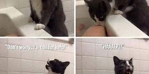 Wait there I'll send help!