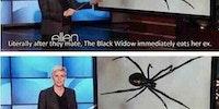 Oh Ellen.