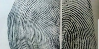 Tree vs fingerprint