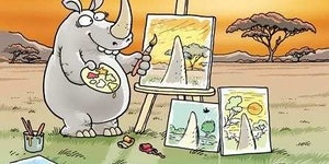 Through a rhino's eyes.
