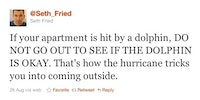 Hurricane tips: