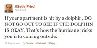 Hurricane tips: