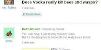 Does vodka really kill bees and wasps?