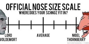 Where does your schnoz fit in?