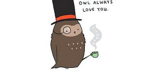 Owl always love you.