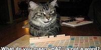 I can play scrabblez?