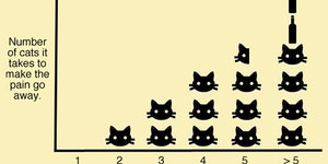 Number of cats it takes to make the pain go away.