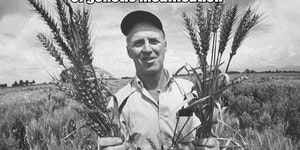Norman Borlaug - spawn of the devil.