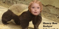 Honey Boo Badger.