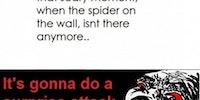 Surprise spider attack!