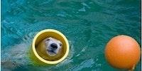 I lurve my tube...