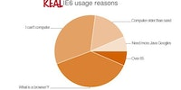 Real IE6 usage reasons.