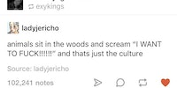 Respect the culture