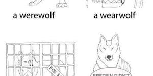 Get Werewoke.