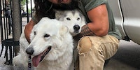 Jason Momoa hugging some dire wolves.