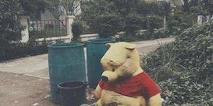 Winnie the Pooh - The Meth Years