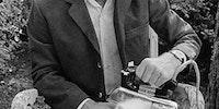 Steve Martin circa 1982