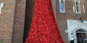 In memory of those who lost their lives in WW1.
