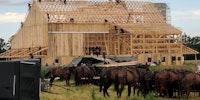 The Amish raising a barn; circa 2017